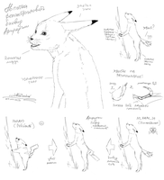 Cat-rabbit (kotozajac) as base for hybrid by Alister-Murkerry