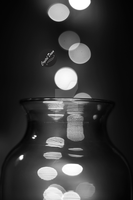 Bokeh black n white by CrystalDawnImagery