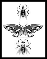 Tattoo Insects by StrawberryKestrel