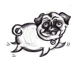 Pug by midnightsubmission