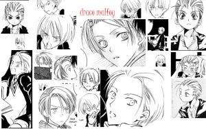 crazy about draco malfoy. by zen-yinyang-patsy