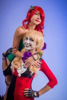 Batman - Harley Quinn and Poison Ivy by CipherCosplay