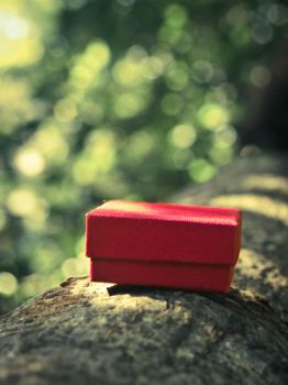 Little Red Box Ver2 by Wretched-Existence