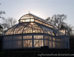 greenhouse at twilight by euphoricmadness