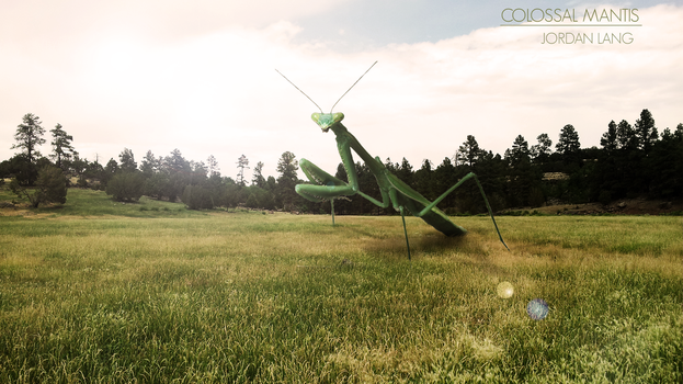 Mantis by jordanlang2