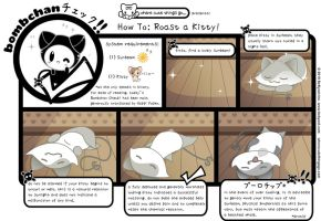WCTG: How to Roast a Kitteh by lafhaha