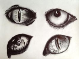 Eyes by Lauren180