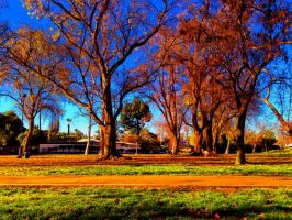 Park in Bright Colors by GeneLythgow
