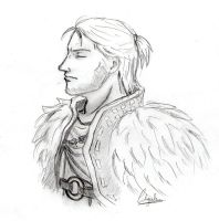 Anders Dragon Age by YukinaSk