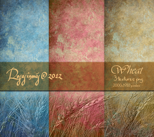Pack Textures Wheat by ROSASINMAS