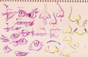 Eyes Noses by sugar0o