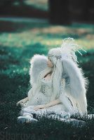 Send me an angel by sharuya