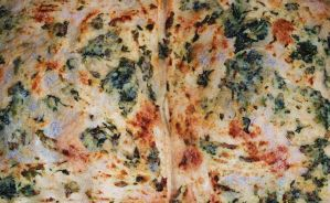 Lasagna baked ricotta and spinach by bob60t