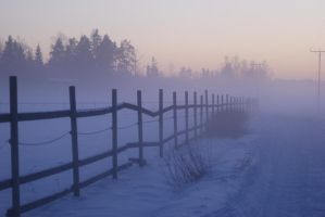 Foggy winter road by jaggo