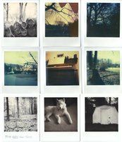 Polaroids 4/22/12 and Before by peaceboner
