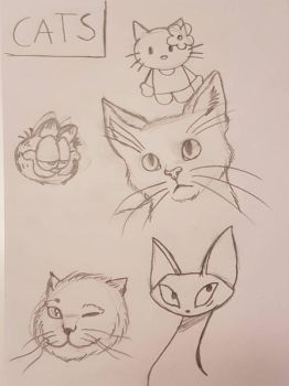 sketch: cats by Mialindlen-son