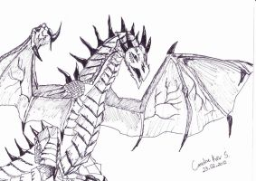 Dragon by cahrolzit