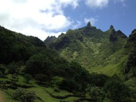 Scenery from Hawaii by bamboocath