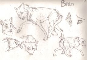 Bran Final Concept by Tuco
