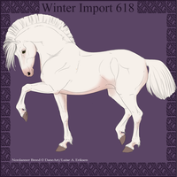 Winter Import 618 by ThatDenver