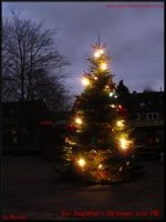 Neighbour's Christmas Tree 2011 by Miarath