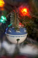 Lensbaby Parents Tree VI by LDFranklin