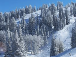 Powder Mountain 5608596 by StockProject1