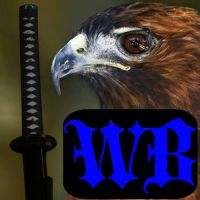 Winds Blade Icon by Scubacat17