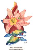 Sockeye and Lilies by Ahkahna