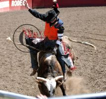 CWU Rodeo: Bull Riding by saudimack