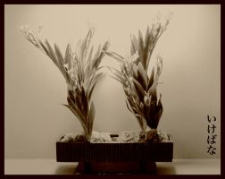 Ikebana by AlanJunior