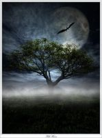 Full Moon by 00AngelicDevil00