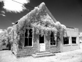 Abandoned country store by harrietsfriend