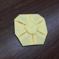 Sand Dollar by Origami1105