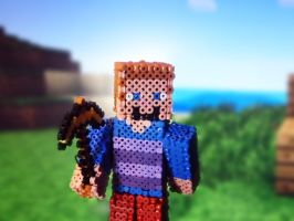 Stylish Steve In the Minecraft World by Xzavier-JP