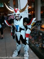 Pax 2013 Ronin by nwpark