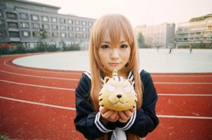 TodaDora - Aisaka Taiga (film)-02 by MissAnsa