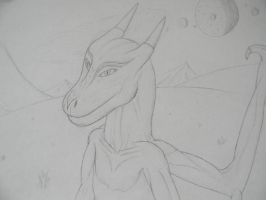 Dragon by Cheepeck