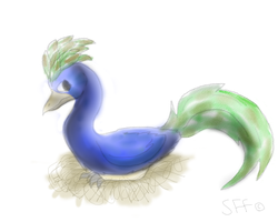 Peacock by SonilverFanForever