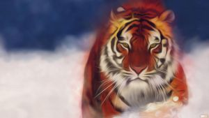 Tiger by check2cc