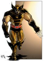 Wolverine by spidermanfan2099
