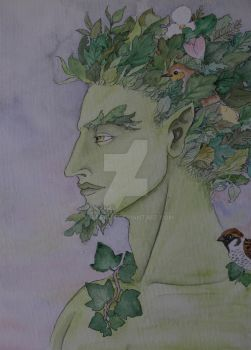 Young Greenman by verreaux