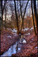 Little stream by JoInnovate