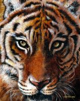 Tiger paint by CallieFink