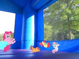 Ponies at a bounce house 2 by ToaDJacara