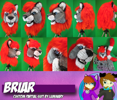 Briar -Custom Partial Suit Commission by Luminary by OurMassHysteria