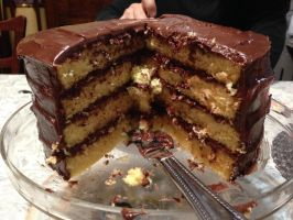 Chocolate Icing Yellow Cake by LexC7