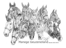 The horses of Geuzeneiland by Yari-San