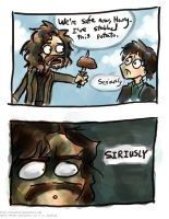 And then one day Sirius Black went crazy by Tavoriel