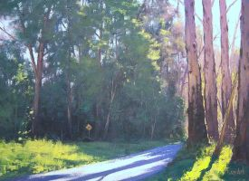 Morning Light by artsaus